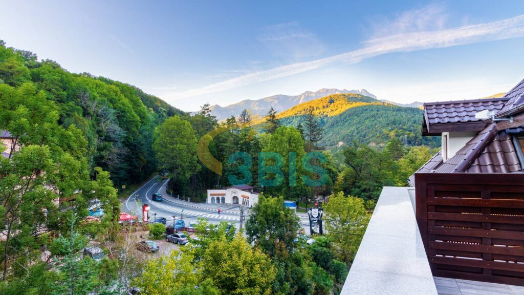 Hotel Izvoare din Calimanesti-Caciulata Oferte și tarife. Birou de Rezervari. Calculează-ți oferta singur, in 2 minute!